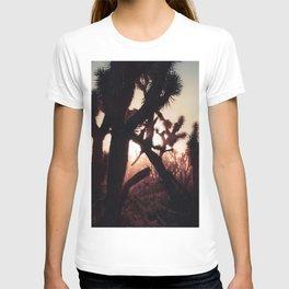 Joshua Trees at Sunset T-shirt
