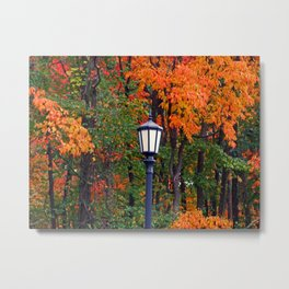 Lamplight in Fall II Metal Print