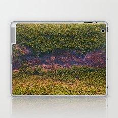 Merriweather Laptop & iPad Skin