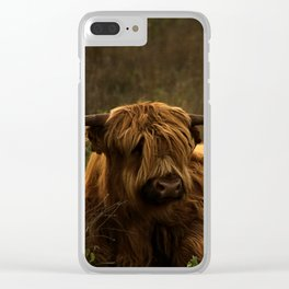 Scottish Highland hairy cow Clear iPhone Case