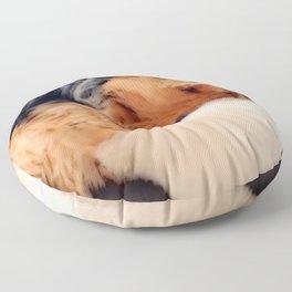 Sweet Dreams Little Yorkie | Nadia Bonello Floor Pillow