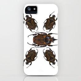 Goliath Flower Beetle iPhone Case