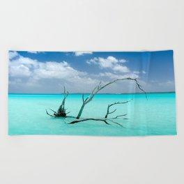 Driftwood in Lagoon Beach Towel