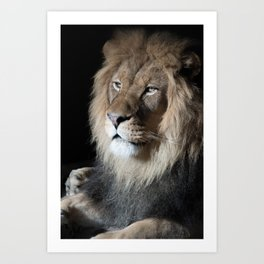 Portrait of a King Art Print