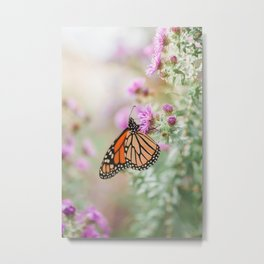 Before I Go - Butterfly Photography Metal Print