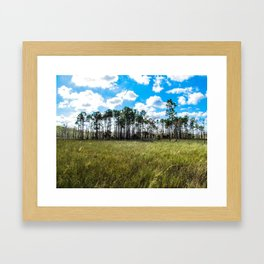 Cypress Trees and Blue Skies Framed Art Print