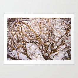 Glaze #5 Art Print