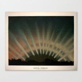 Aurora Borealis by Étienne Léopold Trouvelot (1872) Leinwanddruck