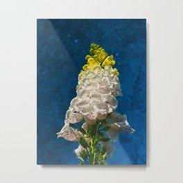 White Foxglove flowers on texture Metal Print