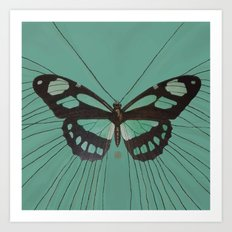 Turquoise Butterfly Art Print
