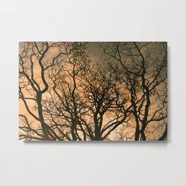 fractal tree Metal Print