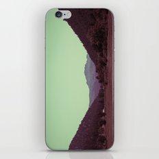 Buffalo Creek iPhone & iPod Skin