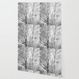 Pt. Iroquois Winter Wallpaper