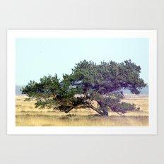 windtree. Art Print