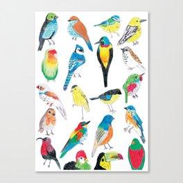 Bird Print Canvas Print