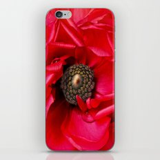 Red Passion iPhone & iPod Skin