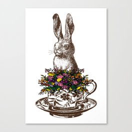 Rabbit in a Teacup Canvas Print