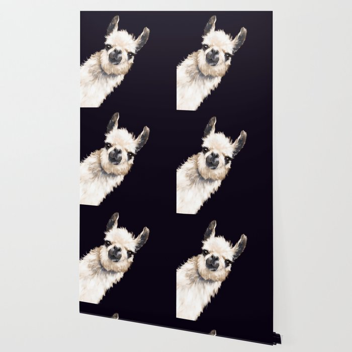Sneaky Llama in Black Wallpaper