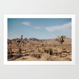 Joshua Tree, CA Art Print