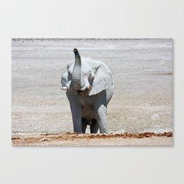 NAMIBIA ... Elephant fun III Canvas Print