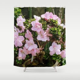 Pink Tree Shower Curtain