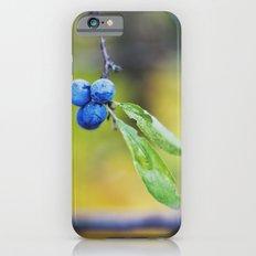 autumn fruit. iPhone 6s Slim Case