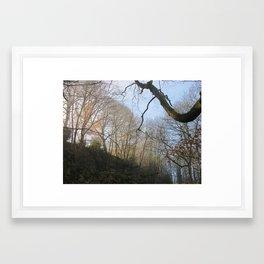 Image twenty eight Framed Art Print