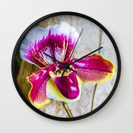Wild Pink and Yellow Lady Slipper Flower Wall Clock