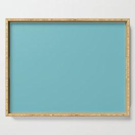 Solid Pale Blue Hosta Color Serving Tray