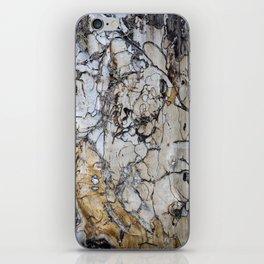 Natural Distressed Beach Drift Wood Textures iPhone Skin