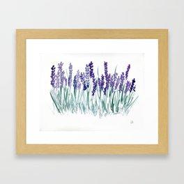 Larkspurs Framed Art Print