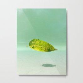 High light Metal Print