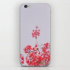 Sweet Pink  iPhone & iPod Skin