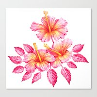 hibiscus Canvas Prints featuring Hibiscus by Sanjana Baijnath