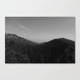 Sequoia National Park II Canvas Print
