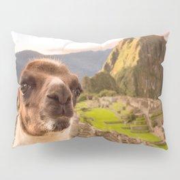 Llama #selfie Pillow Sham