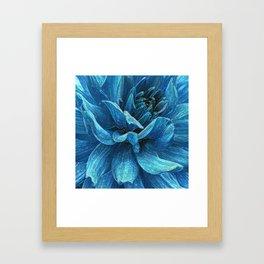 Big blue flower Framed Art Print