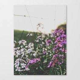 Purple Flowers • Appalachian Trail Canvas Print