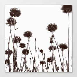 FLOWER 030 Canvas Print
