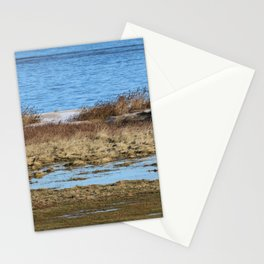 At the beach 3 Stationery Cards