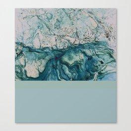 underwater II Canvas Print