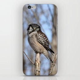 Spring in style iPhone Skin