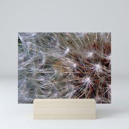 Dandelion Seeds Mini Art Print
