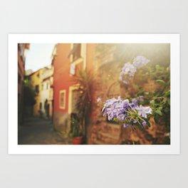 Monterosso al Mare Art Print