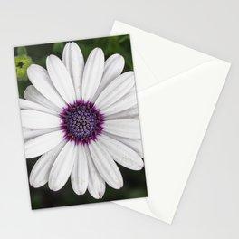 Flower Portriat - Purple Power Stationery Cards