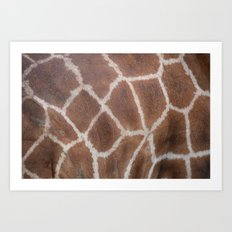 Giraffe pattern Art Print