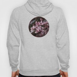 Spring Cherry Tree Blossoms - II Hoody