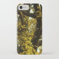 fibonacci iPhone & iPod Cases featuring Fibonacci by Monica Ortel ❖