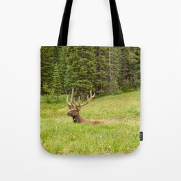 Wapiti in Velvet Tote Bag