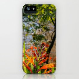 if being mainstream doesn't float your boat, follow your own dream! iPhone Case
